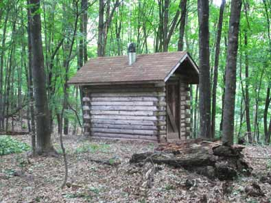 Log Cabin Outhouse