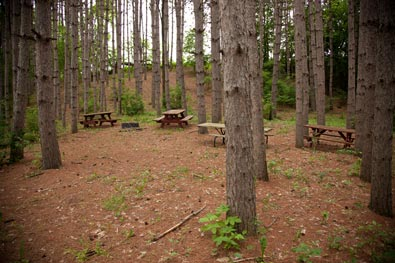 Fisher's Knoll Campsite