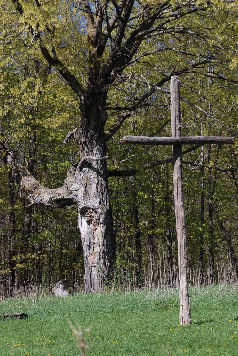 Summer Cross. Statement of Faith